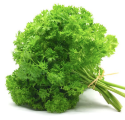 LW Curly Parsley [15g]