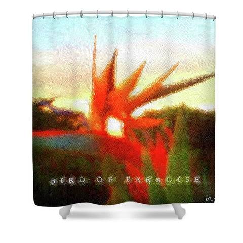 Bird Of Paradise - Shower Curtain