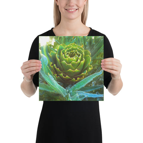 Artichoke Wrapped Canvas Print