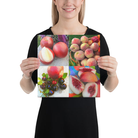 Fruit Plate Wrapped Canvas Print