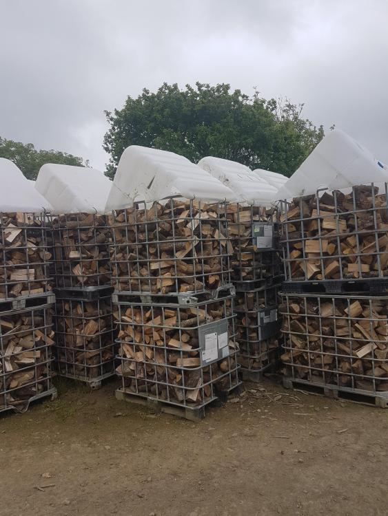 4 Cages - Seasoned Birch