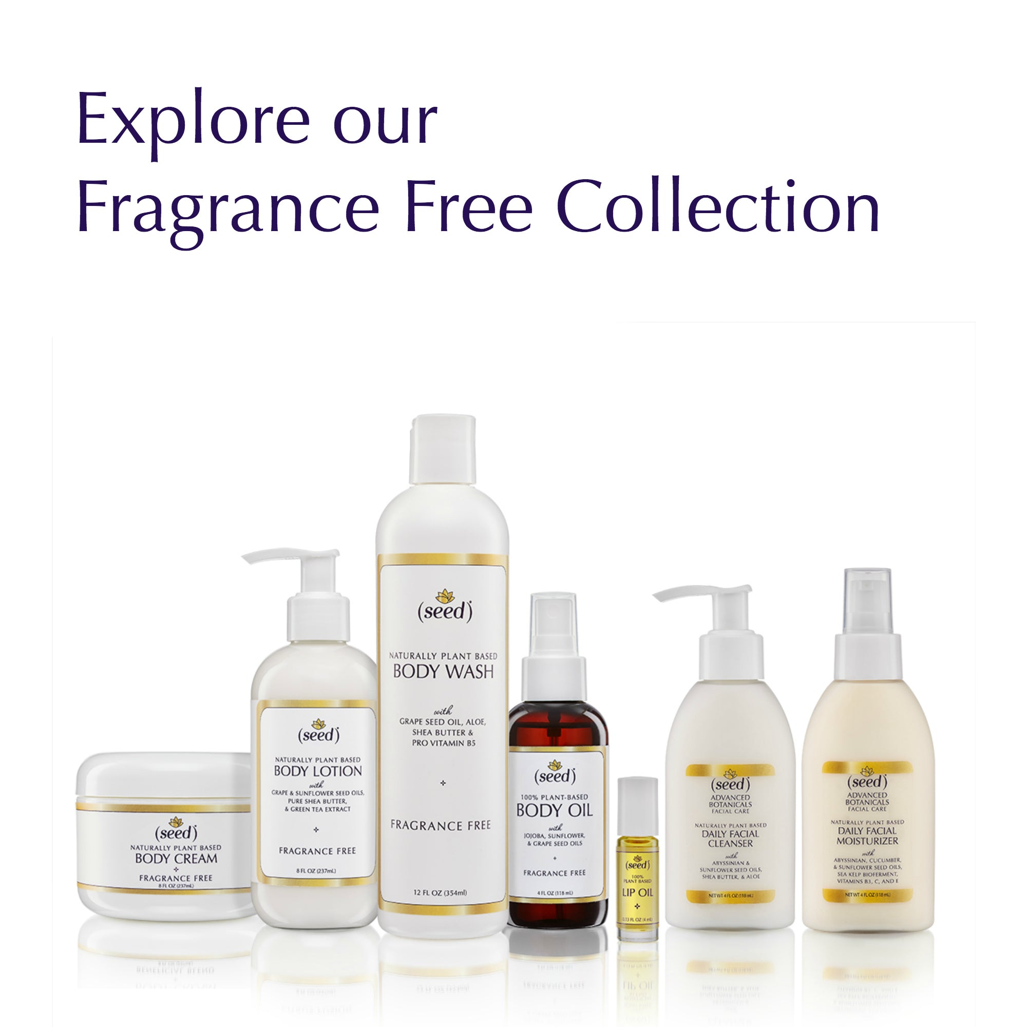 Seed fragrance free for those searching for hypoallergenic natural body and face care