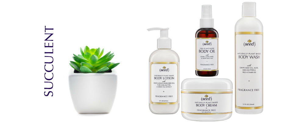 Seed Body Care, succulent