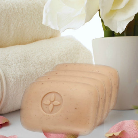 Seed Body Soap cleanses moisturizes and exfoliates the skin