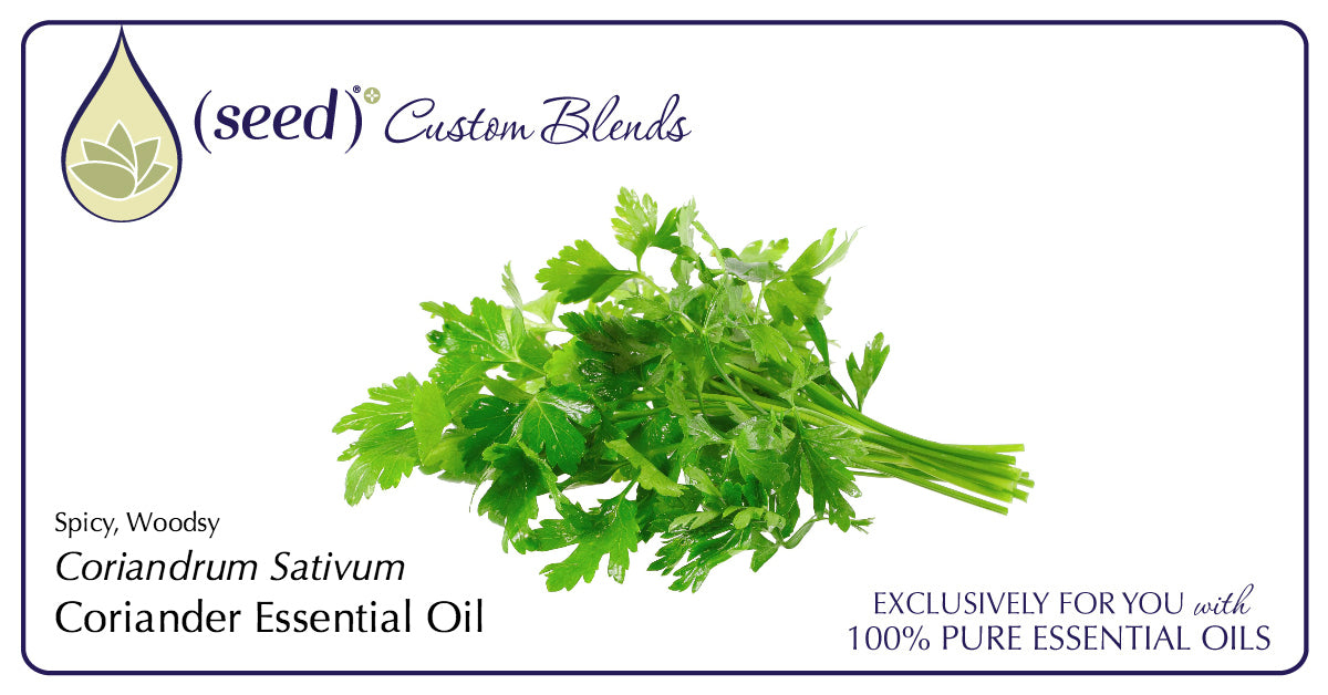 Seed Custom Blends offer Coriander Essential Oil