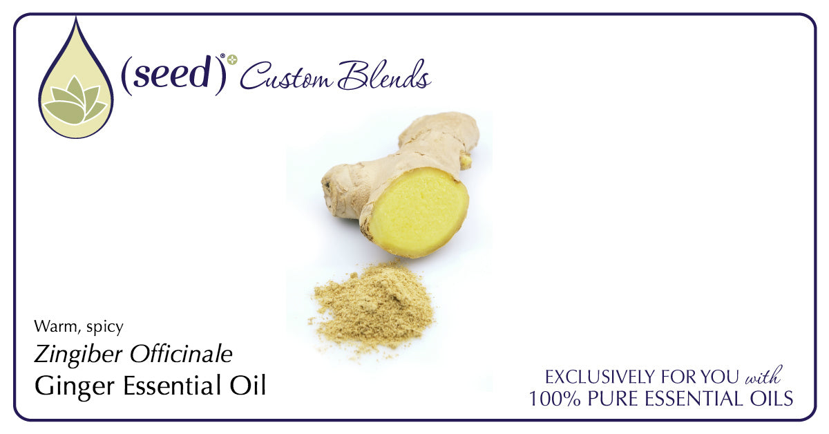 Seed Custom Blends offer Ginger Essential Oil