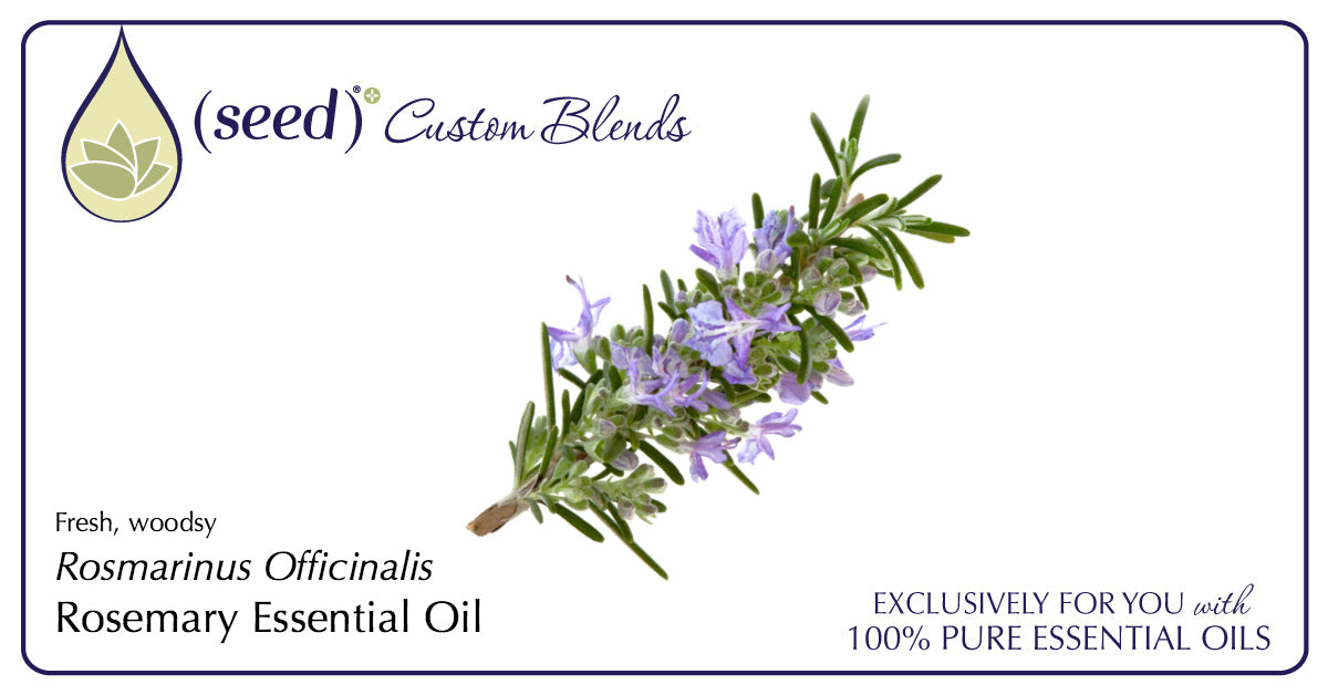 Seed Custom Blends offer Rosemary Essential Oil