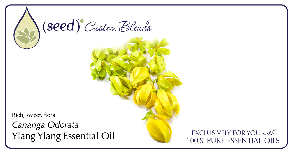 Seed Custom Blends offer Ylang Ylang Essential Oil