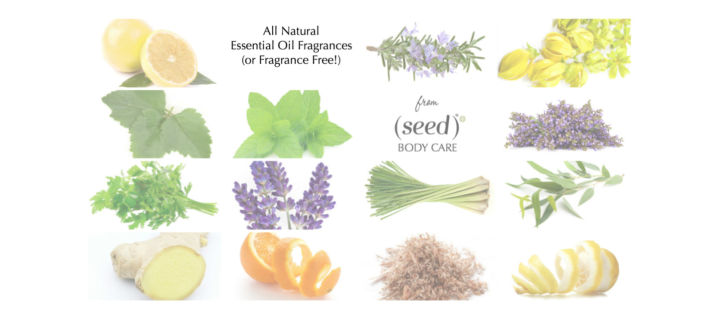 Seed Body Care offers Fragrance Free, or all natural essential oil fragrances