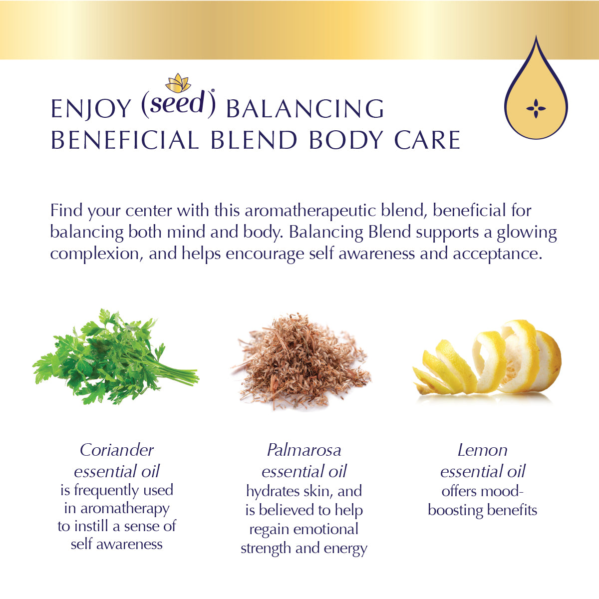 Seed Balancing Blend Body Care with palmarosa, lemon, and coriander essential oils