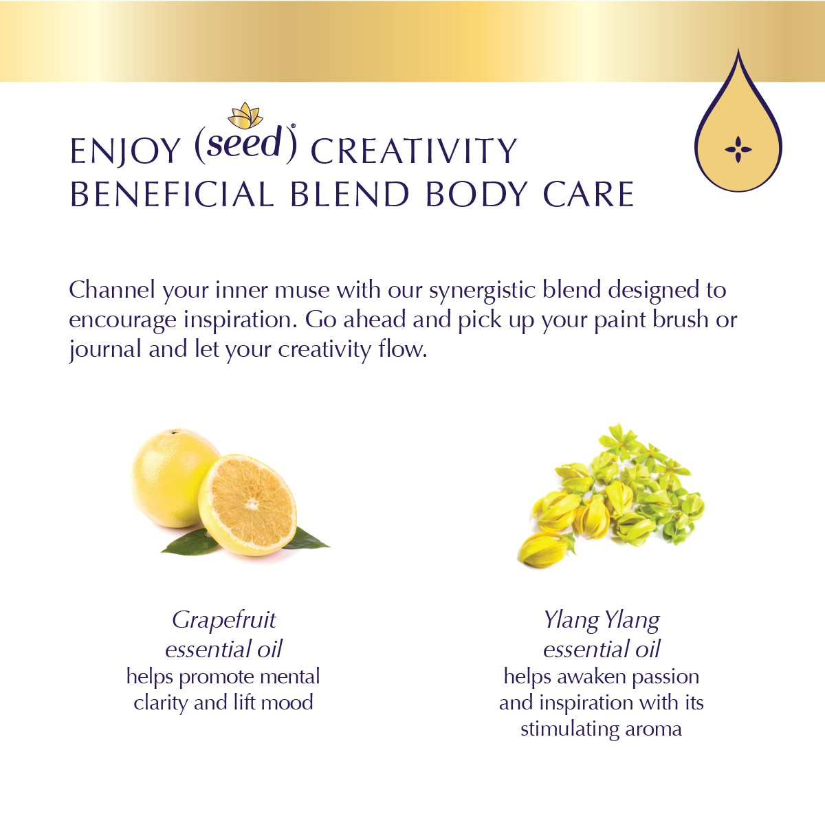 Seed Creativity Blend Body Care with grapefruit and ylang ylang essential oils