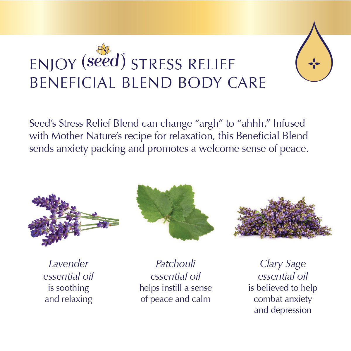 Seed Stress Relief Blend Body Care with lavender, patchouli, and clary sage essential oils