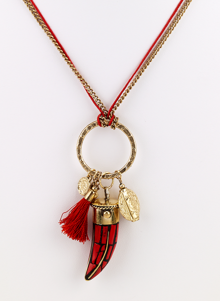 Horn Chip and Charms Long Necklace