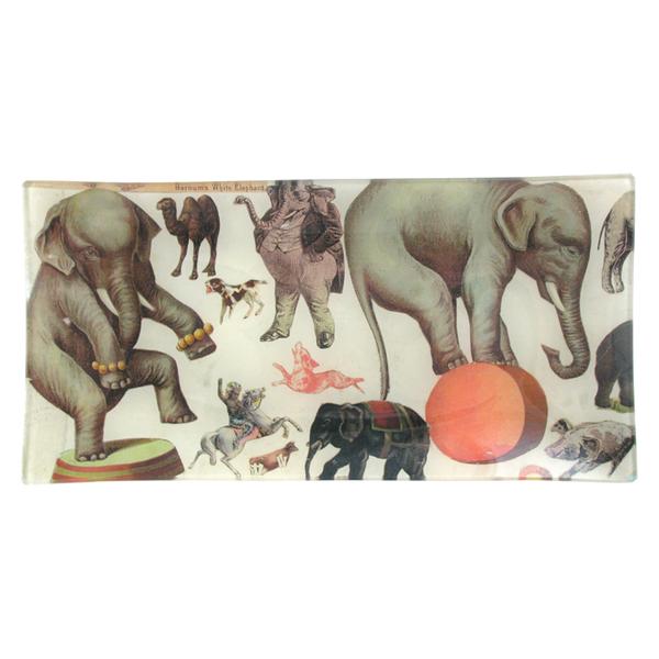 John Derian Pencil Tray: Barnum's White Elephant