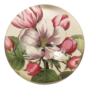 John Derian Dome Paperweight: Beach Rose