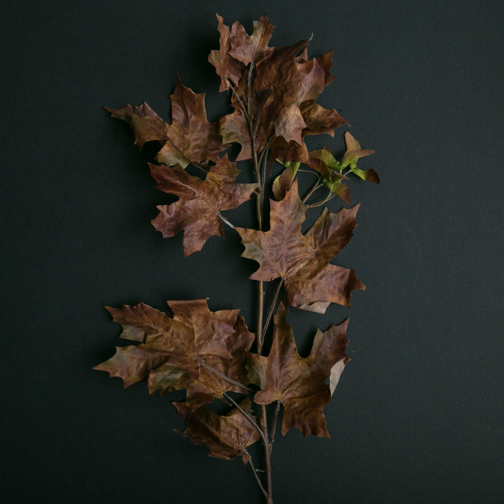 Brown Crafted Autumn Leaves Stem