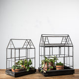 metal house shaped terrarium