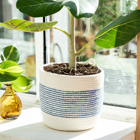 Blue Stripe Cotton Planter Holder