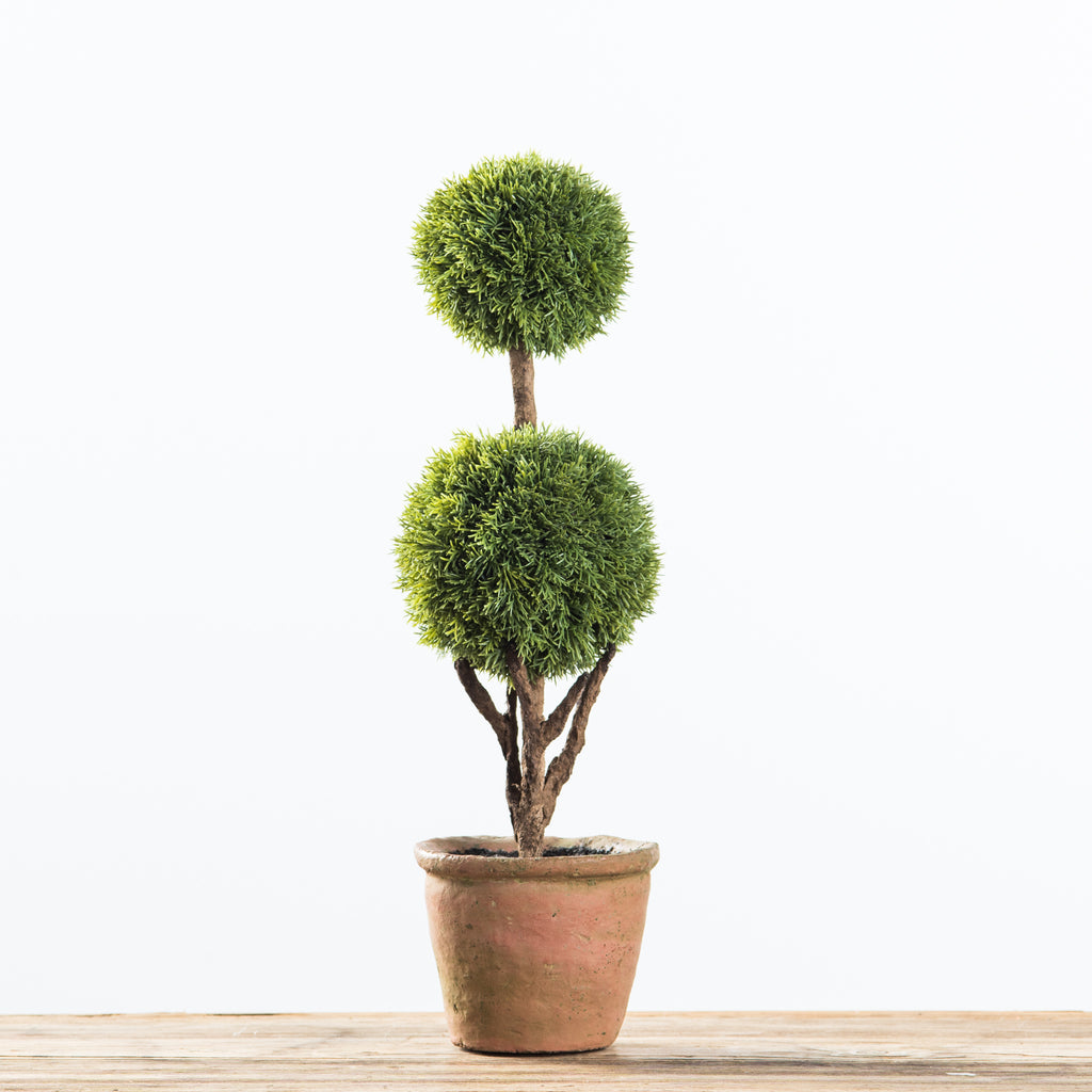 two-tiered cypress topiary
