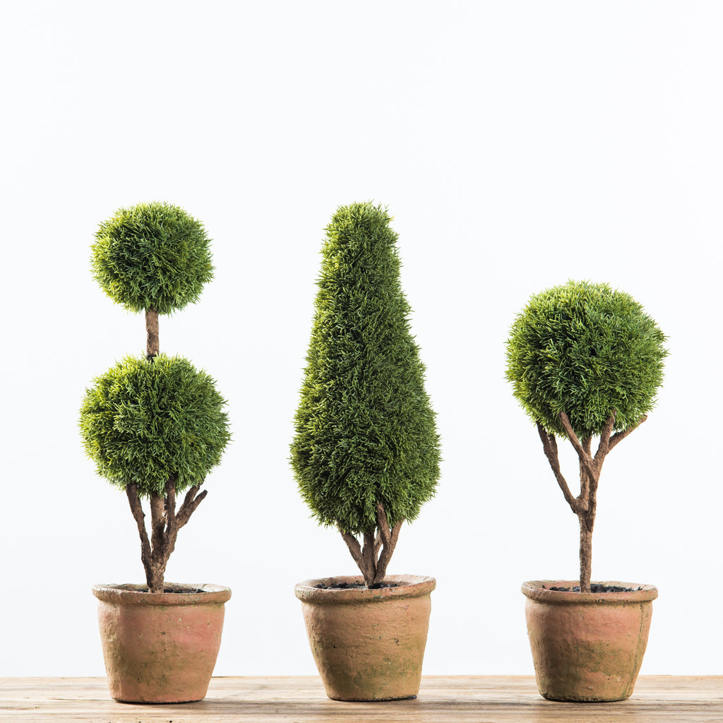 cypress topiaries