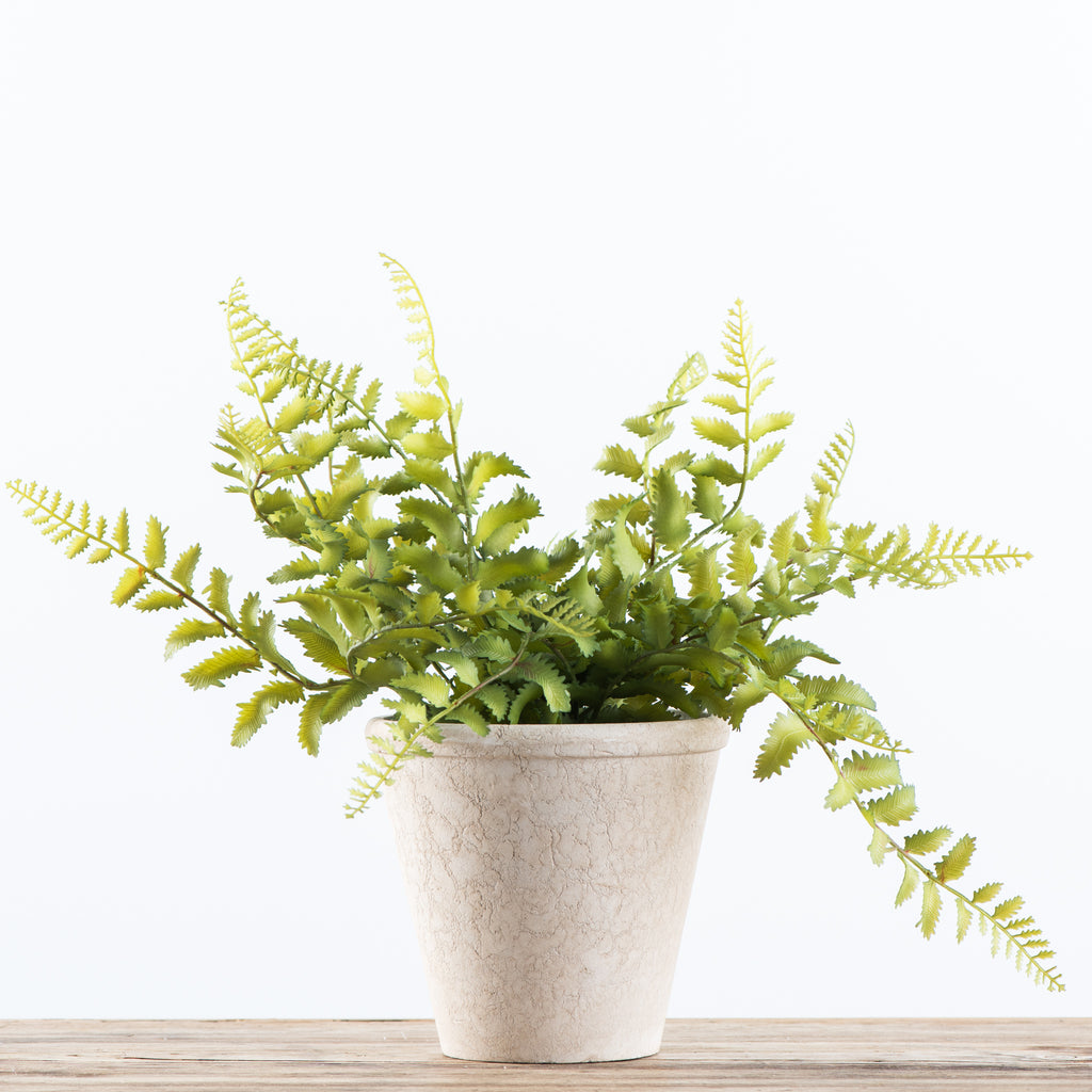faux potted soft shield fern