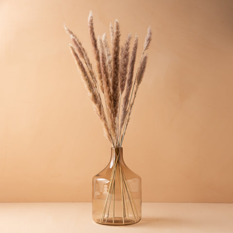 dried real pampas grass