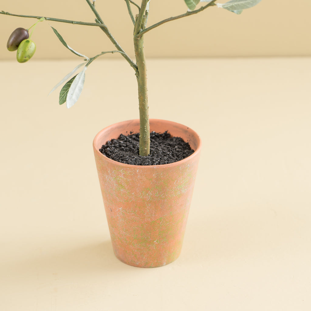 faux olive tree topiary in terracotta pot