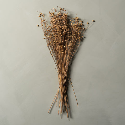 real dried flax stem bunch