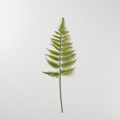 faux fishbone fern stem