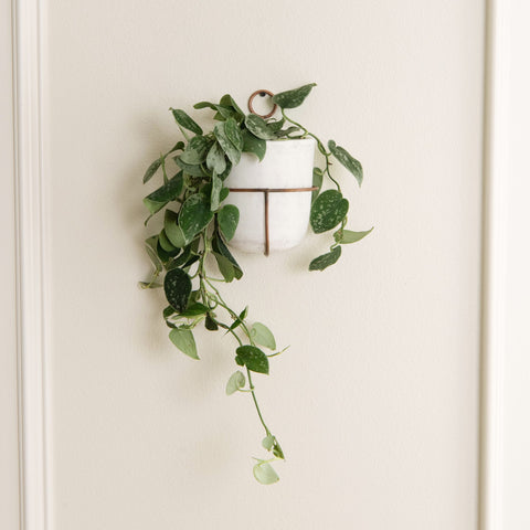 white modern ceramic pot with thin copper wall mount hanger