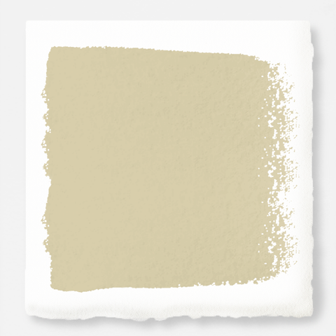 Cool beige dusted with hazel and cocoa interior paint