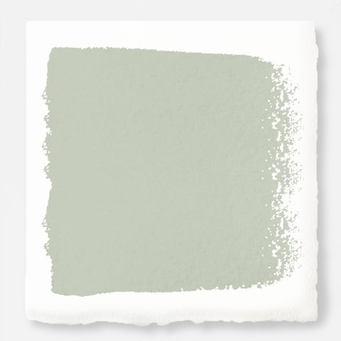 A light pale gray interior paint