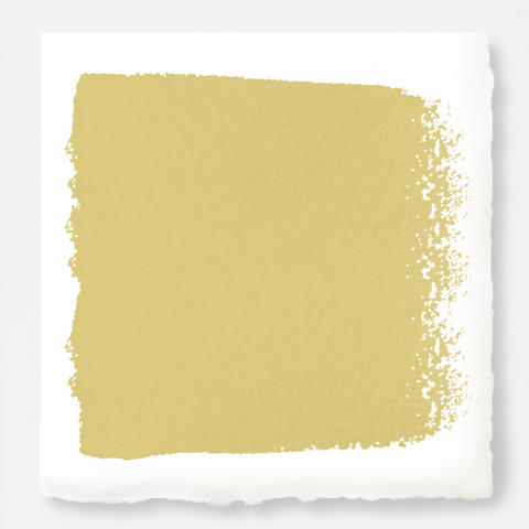 Earthy yellow with slight green undertone chalk style paint