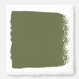 Celery Seed - Chalk Style Paint