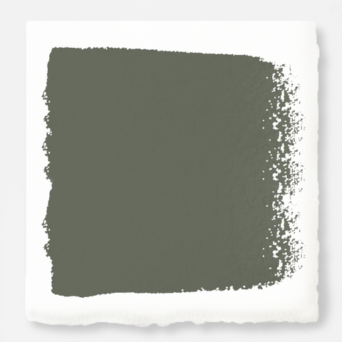 Almost army green with earthy brown and gray interior paint