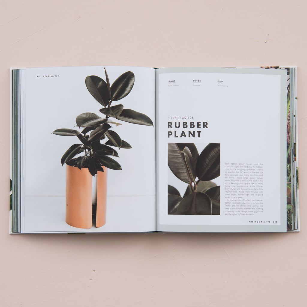 "house plant guide book titled ""Leaf Supply"" by Lauren Camilleri"