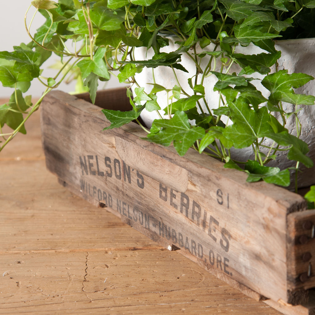"Vintage ""Nelson's Berries"" Crate"