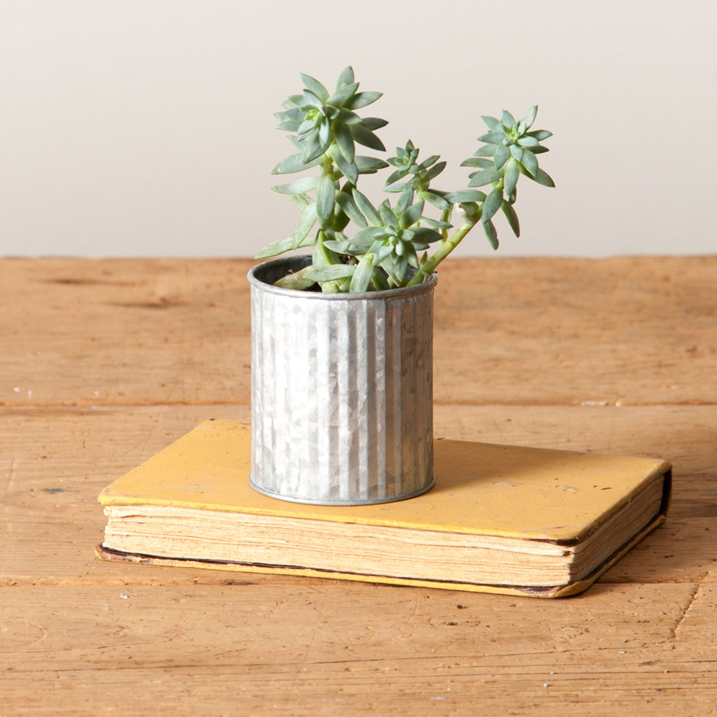 Leila Tin Planter