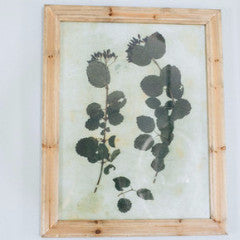 Pressed Botanical Print