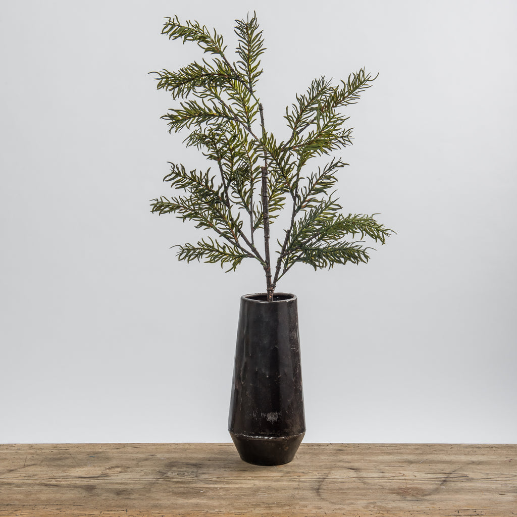 Christmas Native Fir Branch - Magnolia Market | Chip & Joanna Gaines