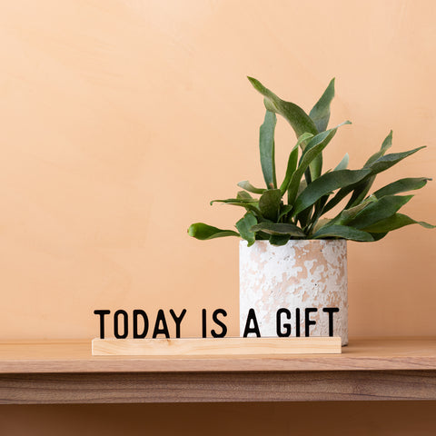 "wooden block stand with acrylic phrase ""today is a gift"" in black"