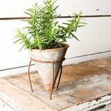 Cone Flower Pot with Stand