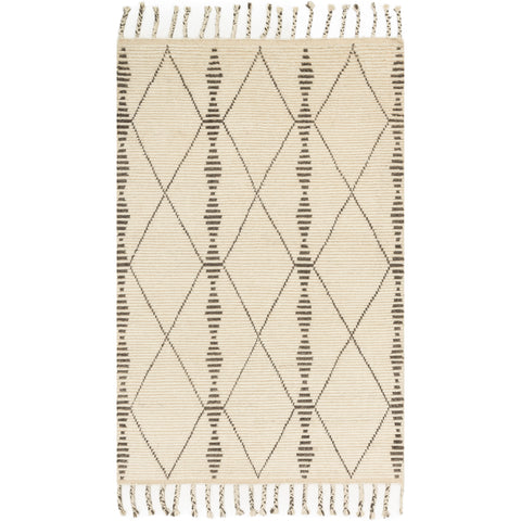 modern ivory colored rug with asymmetrical dark grey line detail and tassels