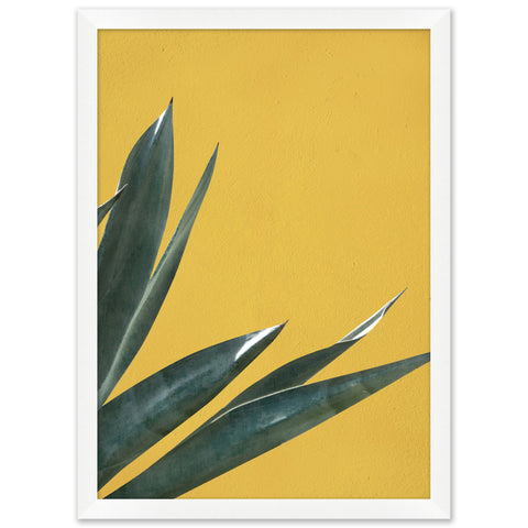artwork of an agave plant juxtaposed on a vibrant yellow background in a white frame
