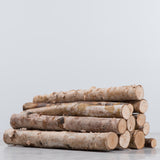 Birch Logs (Set of 8)
