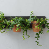 black metal wall triple plant holder