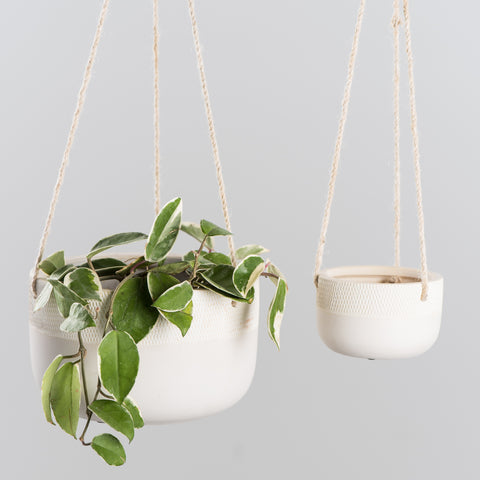 Simplicity Ceramic Hanging Planter