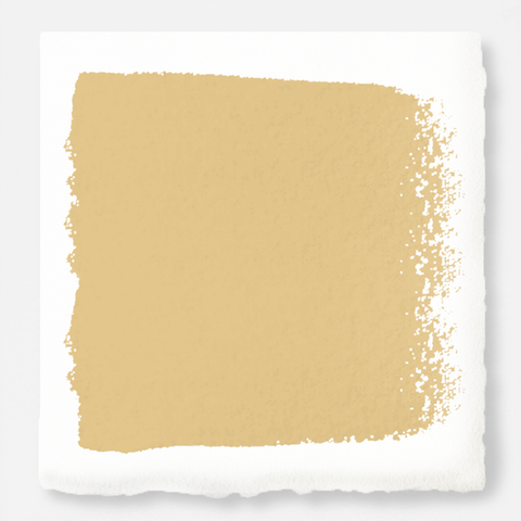 Muted midtoned yellow exterior paint