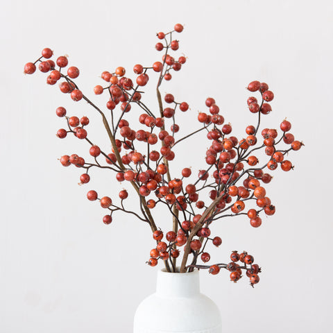 Fall Berry Stem