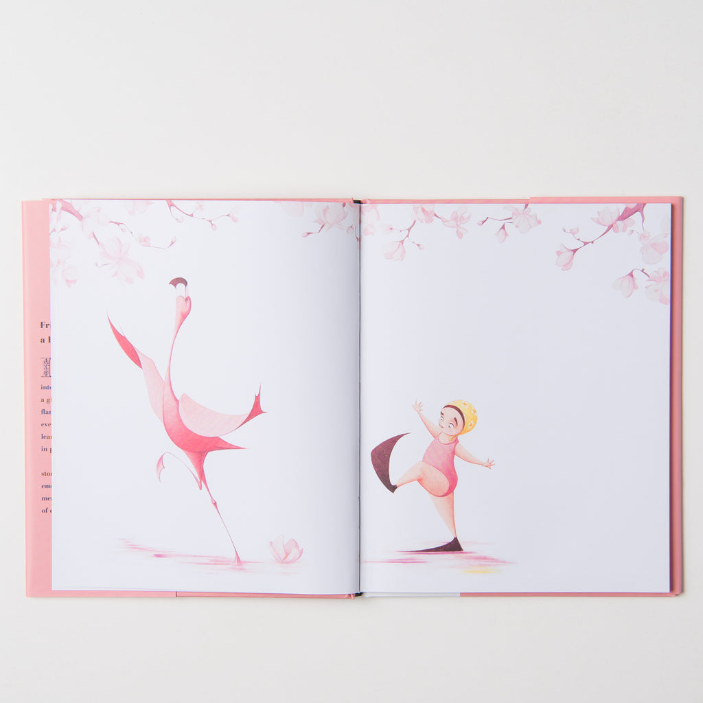 Flora and the Flamingo children's book